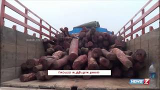35 from TN held for smuggling Red Sanders logs | Tamil Nadu