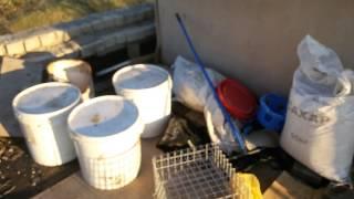 getlinkyoutube.com-26.07. 15. Вечерний гон молодняка николаевских голубей в Самаре. +79276513003.