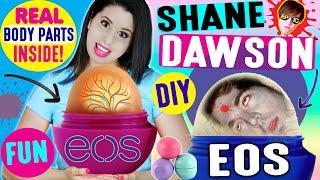 getlinkyoutube.com-DIY Shane Dawson EOS Lip Balm | How To Turn Shane Dawson Into An EOS | Ft. Shane Dawson
