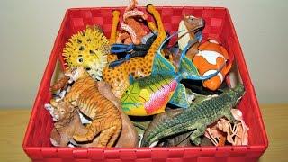 getlinkyoutube.com-My Animal Toy Collection in the Box Part 3 Schleich Safari Wildlife ZOO Farm Animals Toys