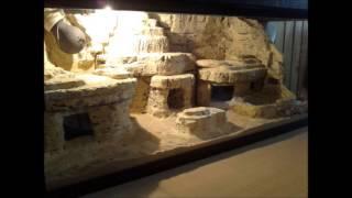 getlinkyoutube.com-Desert terrarium for my leopard gecko / Pustinjski terarijum za leopard gekona