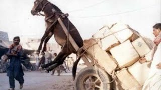 Funny road accidents,Funny Videos, Funny People, Funny Clips, Epic Funny Videos Part 21