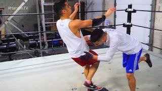 getlinkyoutube.com-WWE MOVES IN THE RING