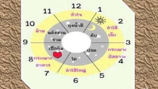 getlinkyoutube.com-นาฬิกาชีวิต