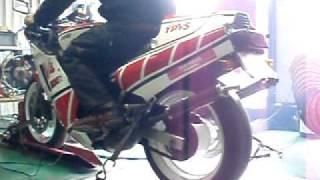 シャシダイの上のYAMAHA RZV500R (84)