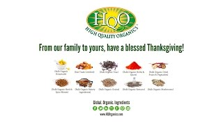 Happy Thanksgiving from HQO