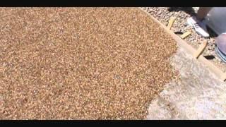 getlinkyoutube.com-Pebblestone flooring driveway installation