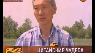 getlinkyoutube.com-КИТАЙСКОЕ АГРАРНОЕ ЧУДО....
