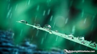 Spring Rain Sounds for Sleep, Studying, Focus | Nature White Noise 10 Hours