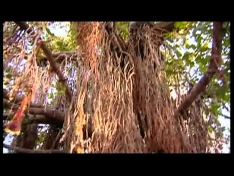 Sun Kangde Diya Loka [Full Song] Rang Lagga Maiya Tere Laal