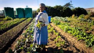 Jane Mt  Pleasant:  Food Sovereignty and Food Security
