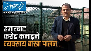 getlinkyoutube.com-NEPALTODAY_2072115_120_186: Goat farming technology, Unnat Beu Bijan