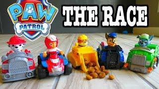 "getlinkyoutube.com-PAW PATROL ""Parody"" The Race with Paw Patrol Racers + GOLDEN Surprise Egg ""a Paw Patrol Race Parody"""