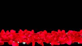 getlinkyoutube.com-قوالب فيديو للمونتاج ورد احمر #79
