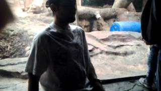 At the zoo part 7 my tonimontana moment