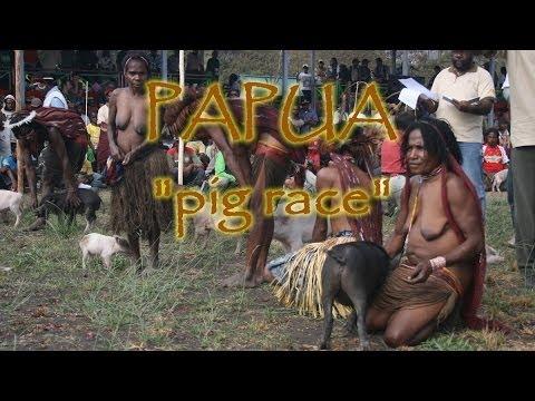 Papua New Guinea. Dani, Lani, Yali. Wamena. Papua pig race
