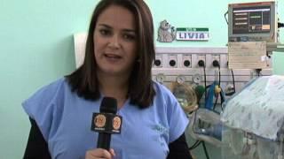 Matéria - Jacareí registra nascimento de quadrigêmeas 2013