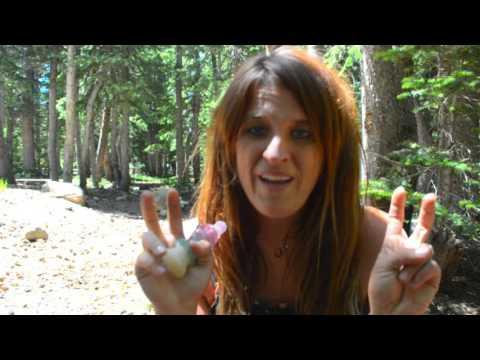Trusting, Traveling & Eco-Villages