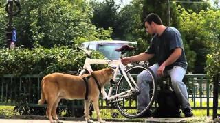 getlinkyoutube.com-Hot de biciclete in Bucuresti / Bike Thief in Bucharest