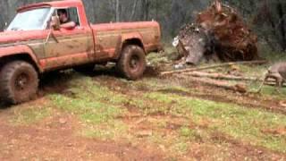 getlinkyoutube.com-Jeep Pickup pulling out a tree stump