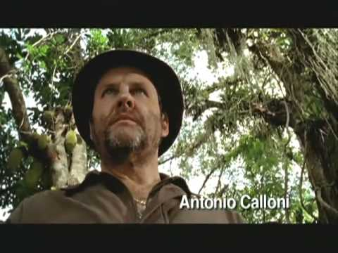 ANJOS DO SOL (2006) TRAILER