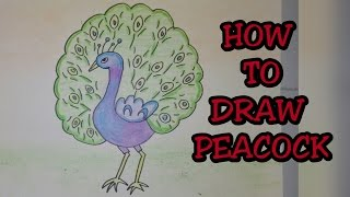 getlinkyoutube.com-Drawing tutorial : Step by step drawing for kids|| How to draw Indian national bird || peacock