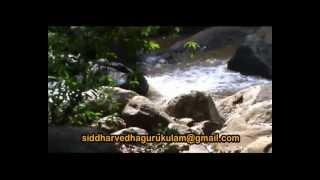 getlinkyoutube.com-paampatti siddhar gugai kolli malai (exclusive video nagarajgurugi)
