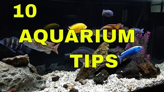 getlinkyoutube.com-African Cichlids: 10 Tips