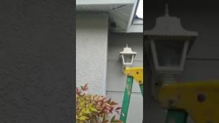 getlinkyoutube.com-Man destroys yellow jacket nest with bare hands ORIGINAL