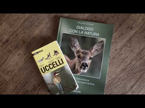 Guida al Birdwatching #2 - il libro del birdwatcher