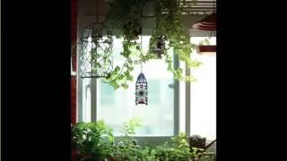 getlinkyoutube.com-Indoor Hanging Plants Window | Indoor House Or Office Plants Picture Collection