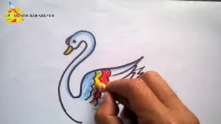 Vẽ con Thiên Nga/How to Draw Swan