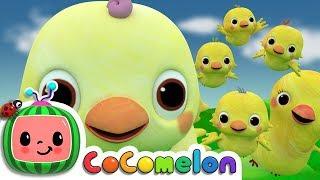 getlinkyoutube.com-Five Little Birds 2  - ABCkidTV