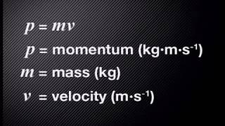 01 What is Momentum?