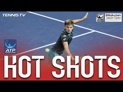 Hot Shot: Goffin Hits Lunge Volley In Tokyo 2017