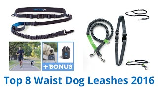 8 Best Waist Dog Leashes 2016