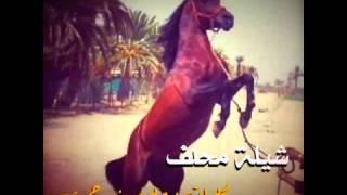 getlinkyoutube.com-شيلة محلف:~كلمات:علي بن حمري