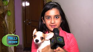 getlinkyoutube.com-Ghar Ghar: Roshni Walia aka Ajabde Gives Sneak-Peek Into Her Sprawling Home | EXCLUSIVE