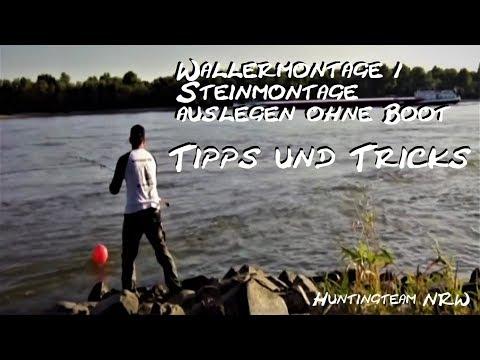 Wallermontage / Steinmontage auslegen ohne Boot ( Welsangeln, Wallerangeln, U-Posenmontage)