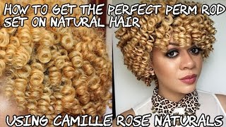 getlinkyoutube.com-How to Get The Perfect Perm Rod Set On Natural Hair | Using Camille Rose Naturals