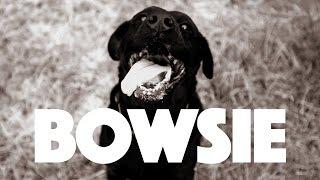 Shortstraw - T-Shirt (Official Video) width=