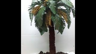 getlinkyoutube.com-COMO HACER UNA PALMERA PRIMERA PARTE - HOW TO MAKE A PALM TREE FOR BELÉN