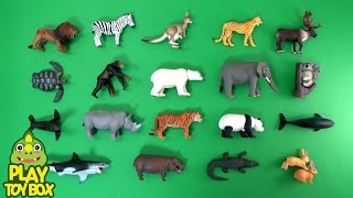 Learning Animal Names and Sounds for kids with Animal Adventure Takara Tomy Toys