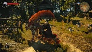 getlinkyoutube.com-10,133 Rend Crit! Witcher 3: Berserker Build Guide 2.0 - Death March NG+ Ready
