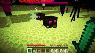 getlinkyoutube.com-Minecraft - More Mobs Mod V1.1.3: The End