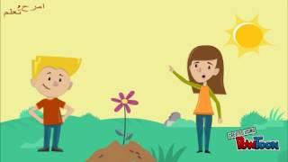 getlinkyoutube.com-كيف ينمو النبات   تعليم اطفال   امرح وتعلم