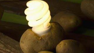 getlinkyoutube.com-How to get electricity from potato 🔴🔴🔴 TUTORIAL