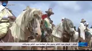 getlinkyoutube.com-البيض: فرسان سيد الناصر يحيون مآثر العلامة سيد الناصر بوحركات