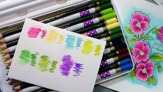 getlinkyoutube.com-OMG! Colored Pencil Expose! {Prima & Spectrum Noir!}