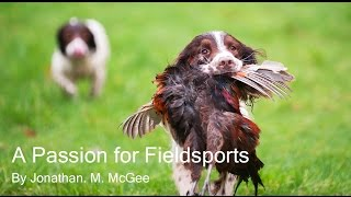 getlinkyoutube.com-A Passion for Fieldsports - Pheasant and Partridge Shooting